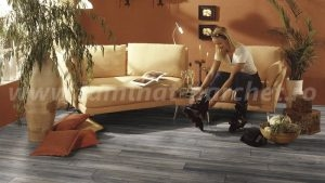 Amazone Stejar Harbour gri 3572 sufragerie