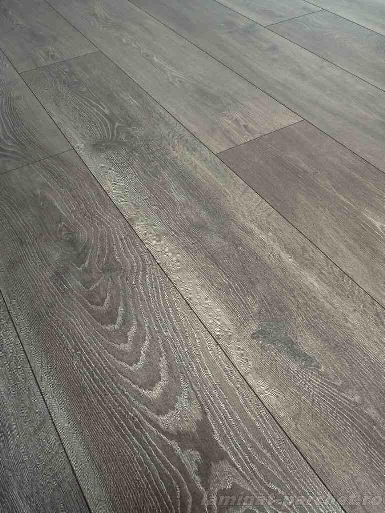 EVOLUTION D 4510 Graphite Oak