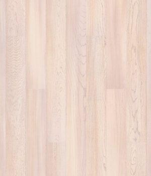 Oak Amaryllis