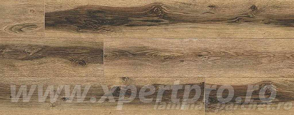 Parchet Xpert Pro 12 mm oferta Bongo Oak 967
