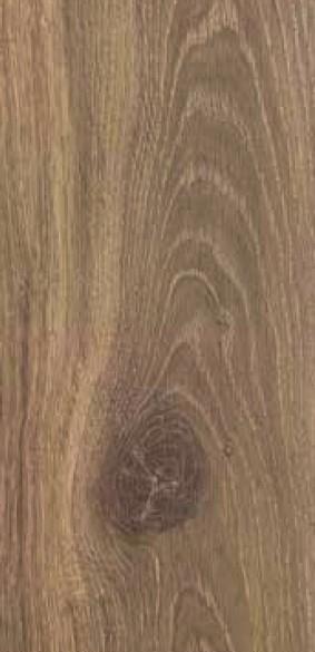 Taza Oak 420