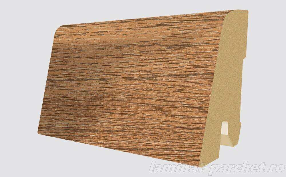 Plinta asortata Egger L401